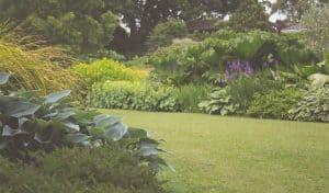 Garden Design Specialists Oxford